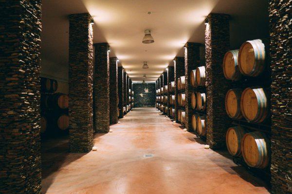 herdade-dos-grus-winery-wine-cellar-alentejo-portu-9PKTKYQ