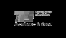 TFS - Transportes Florêncio e Silva, Nelson Lopes, Dir. de Logística