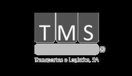 TMS, Henrique Martins, Administrador
